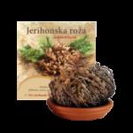 jerihonska_roza_narocilnica_1komf